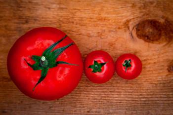 Tomates vue du dessus